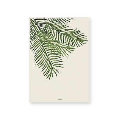 Arecaceae Art Print On Paper 2 Sizes Prints By Hipvan