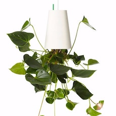 Sky Planter Recycled Small - White Plastic