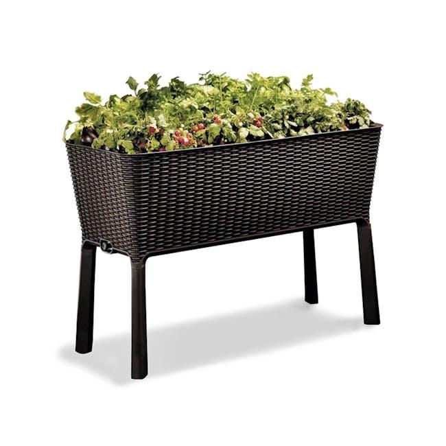 Easy Grow Planter - 1