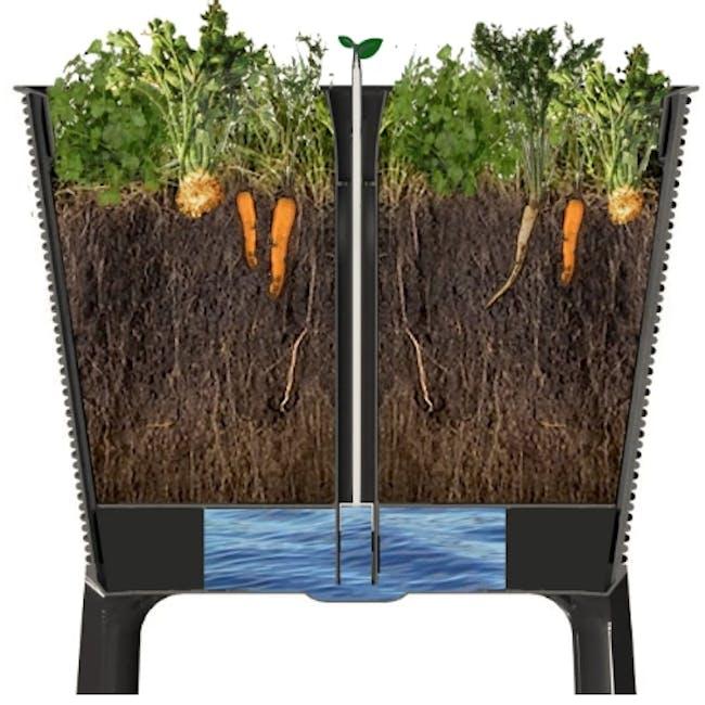 Easy Grow Planter - 2