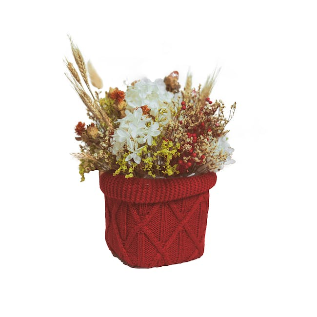 Red Preserved Flowers Knitted Pot - Design 3 - 0