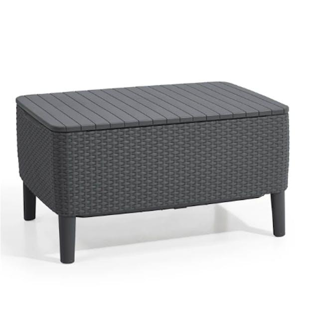Salemo 2-Seater Lounge Sofa Set - Graphite - 6
