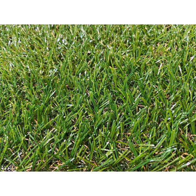 Lawn Grass Carpet - 1