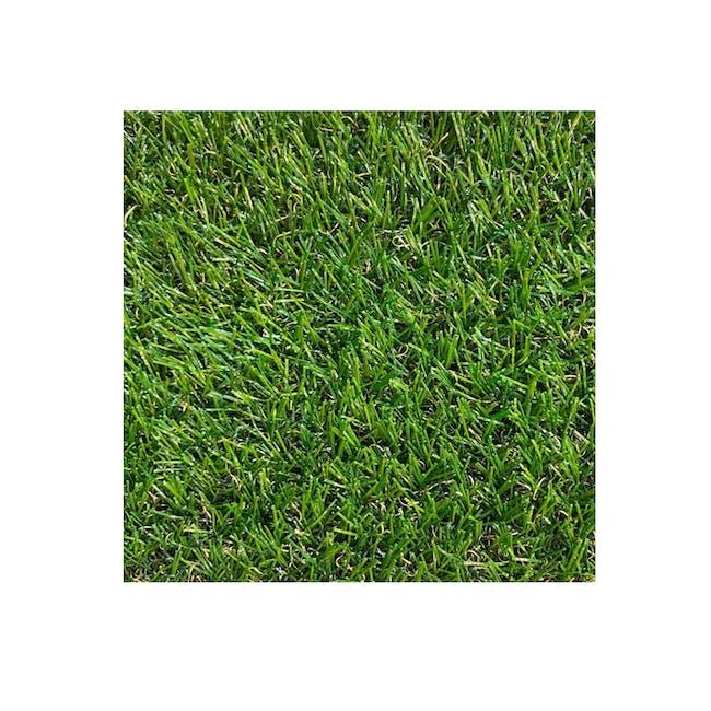 Lawn Grass Carpet - 0