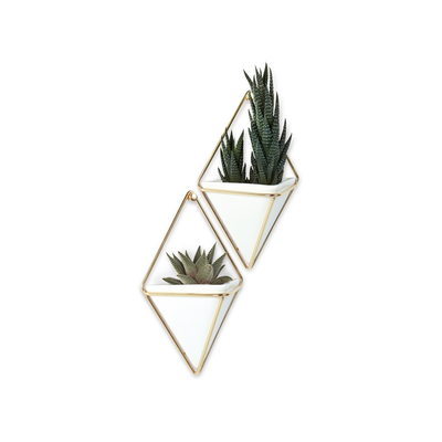 Trigg Small Wall Vessel - Brass - Image 1