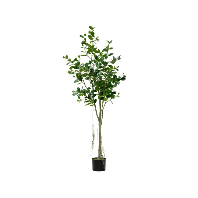 Potted Faux Bayan Tree 160 cm - 0