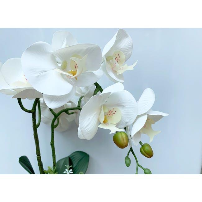 Faux Orchid - 2