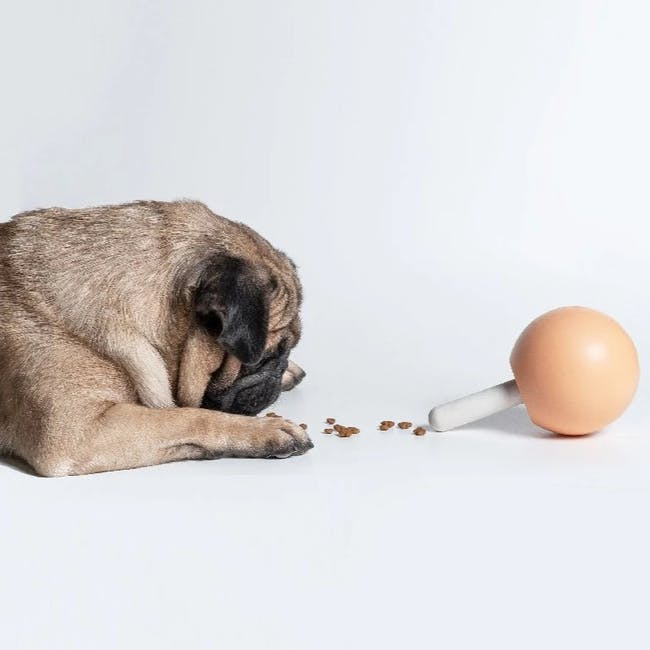 Pidan Lollipop Dog Treat Dispenser - Lavender - 2