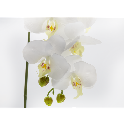 Faux Orchid Pot Set - Image 2