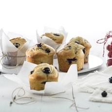 Gourmet Muffins 6 Cav