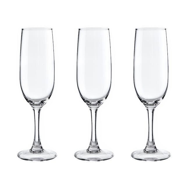 Ilusion Champagne Flute 17cl (Set of 3) - 1