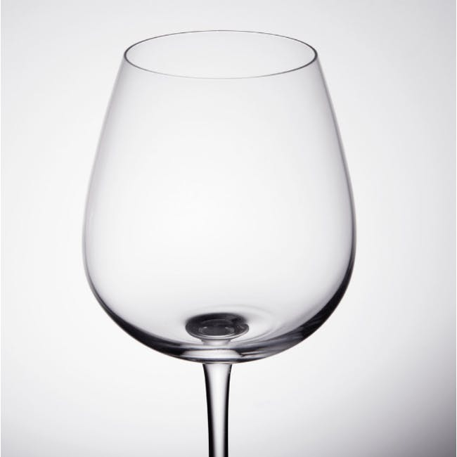Chef & Sommelier Grands Cépages Wine Glass - Set of 6 (2 Sizes) - 4