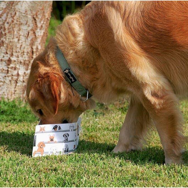 PELEG DESIGN Wuff 'n' Go Dog Travel Bowl Set - 1