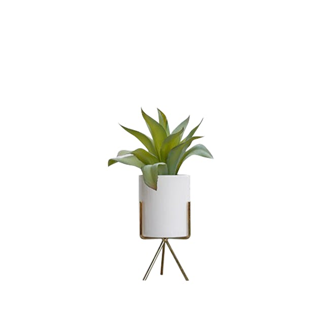 Faux Agave with Planter on Stand 28 cm - White, Brass Legs - 0