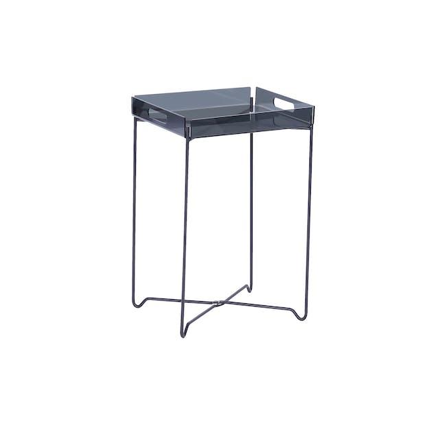 Campbell Occasional Table - Black Acrylic, Iridium - 0