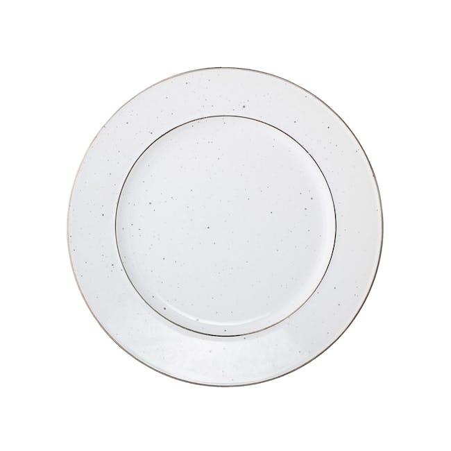 Dani 4 Piece Dinner Set - 1