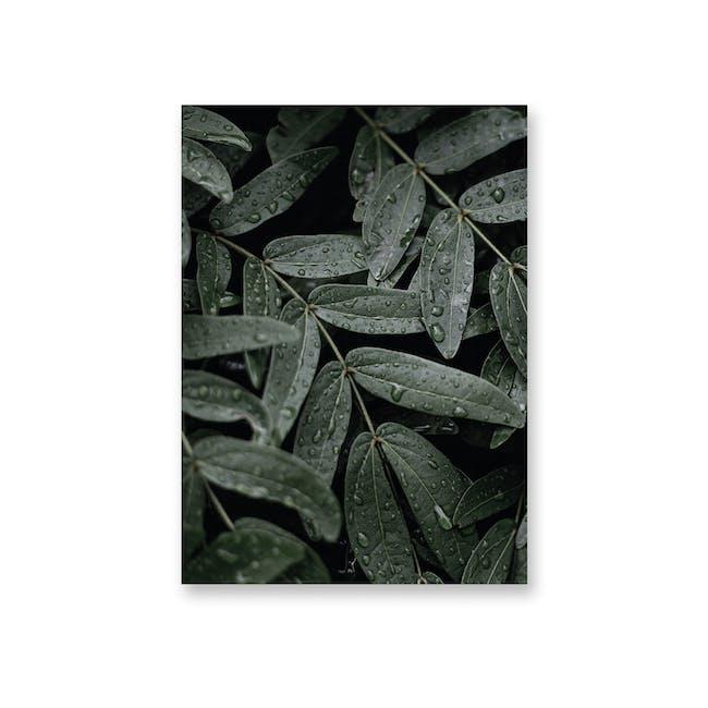 Borderless Florae Art Print on Paper (2 Sizes) - Morning Dew - 0