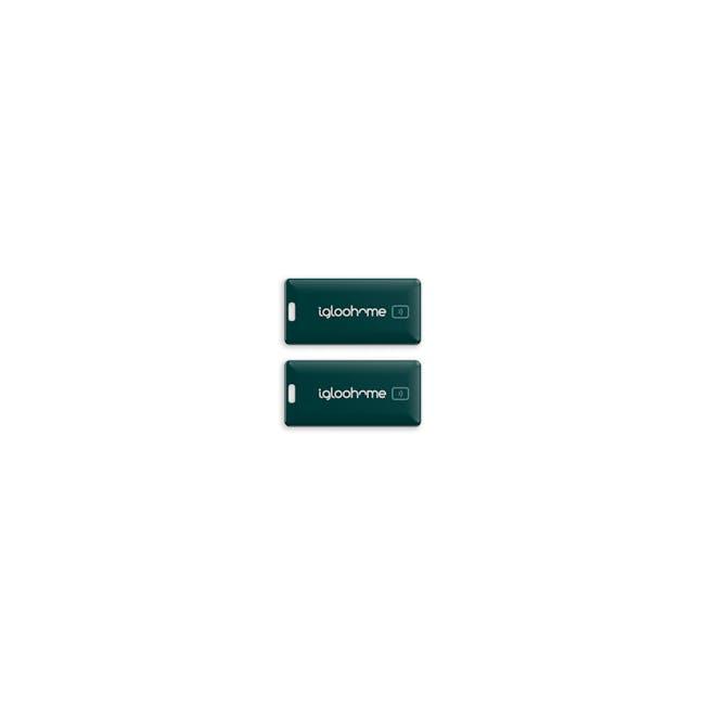 igloohome Rim Lock with Smart Mortise 2 - 12