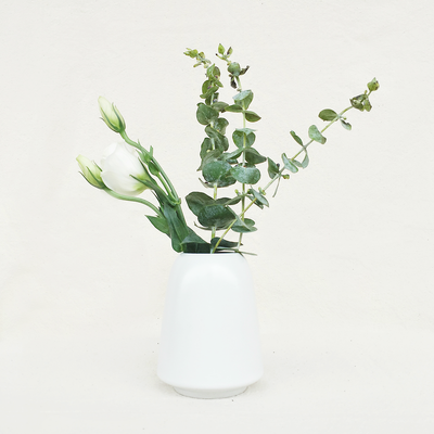 Nordic Matte Vase Cylinder with Wide Rim - White