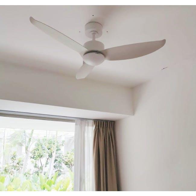 F2FC White Decor Fan (2 Sizes) - 1