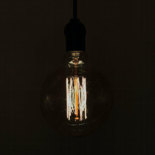 Edison G125 Squirrel Cage Filament Bulb - 2