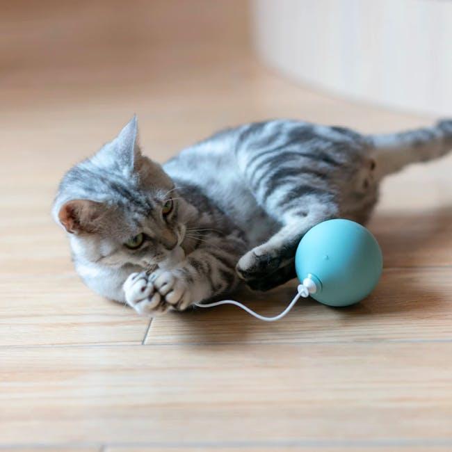Pidan Balloon Cat Toy - Baby Blue - 1
