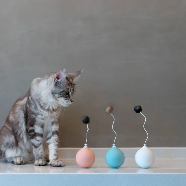 Pidan Balloon Cat Toy - White - 1