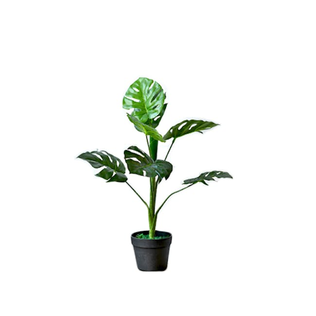 Potted Faux Monstera Tree 70 cm - Small - 0