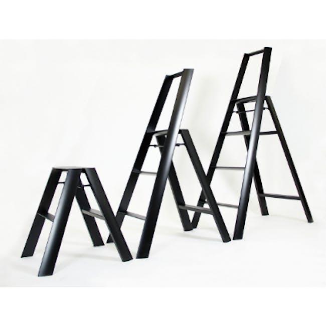 Hasegawa Lucano Aluminium 4 Step Ladder - Black - 1