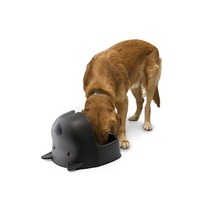 Mr Dog Pet Dish