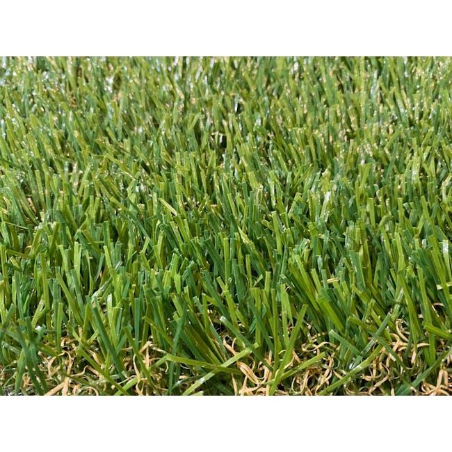 Meadow Grass Carpet - 1