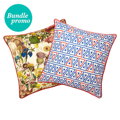 Ferin And Gnant Red & Blue Cushion Covers