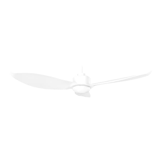 F3FC White Decor Fan (2 Sizes) - 1