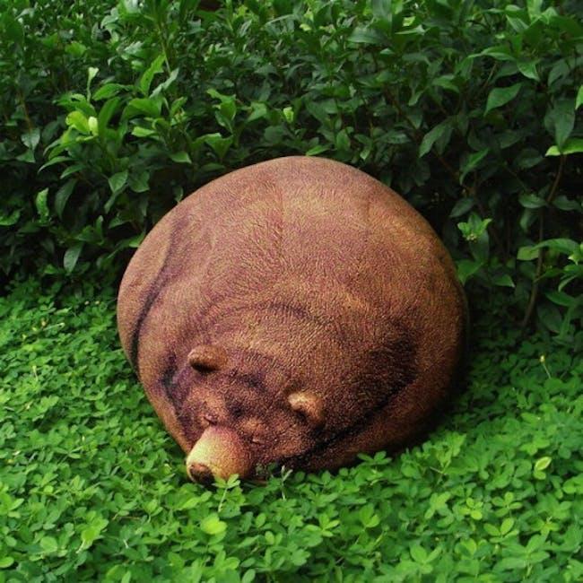 Sleeping Grizzly Bear Bean Bag - 0