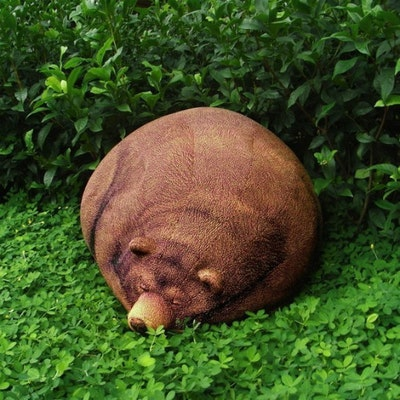 Sleeping Grizzly Bear - Image 1