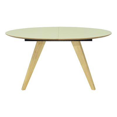 Ryder Oval 8 Seater Extendable Table - Dust Green Lacquered, Oak