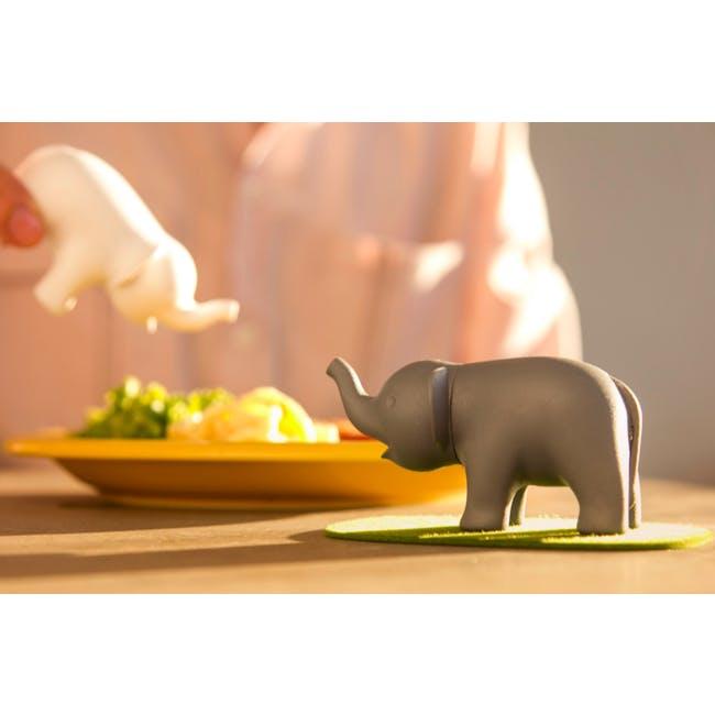 Duo Elephant Salt & Pepper Shaker - 4