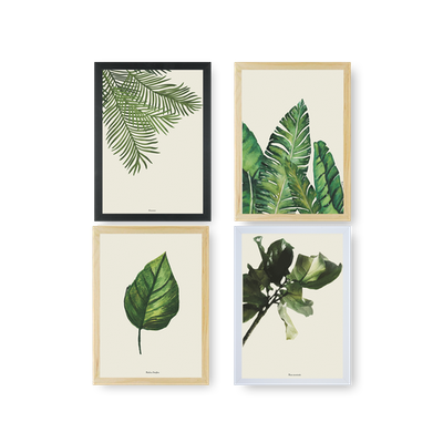 Tropical Art Prints Bundle - Image 2