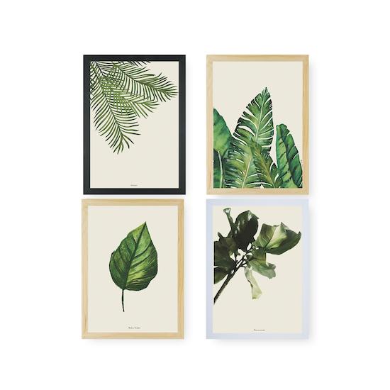 HipVan Prints - Tropical Art Print Set on Paper (2 Sizes)