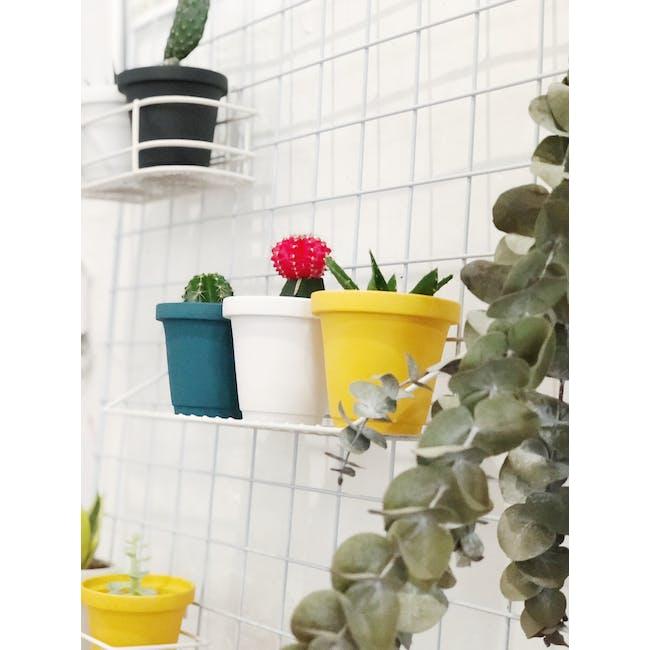 Matte Glaze Mini Plant Pot - Chalk White - 4