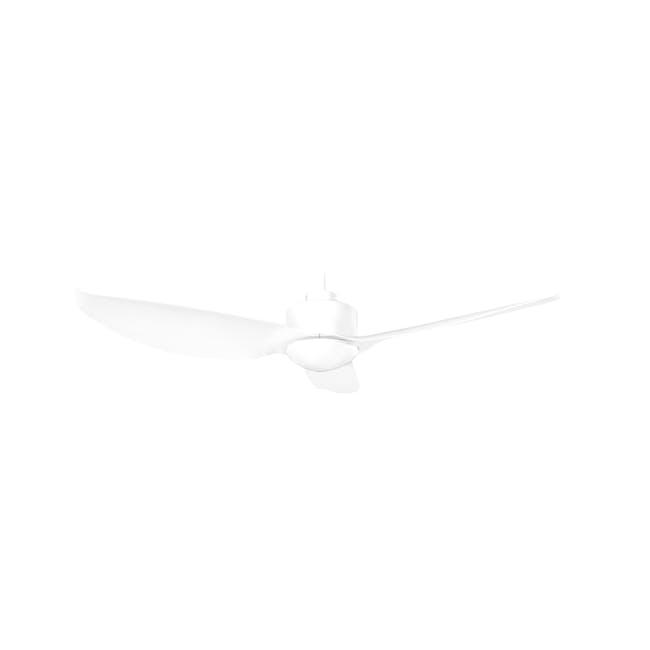 F2FC White Decor Fan (2 Sizes) - 0