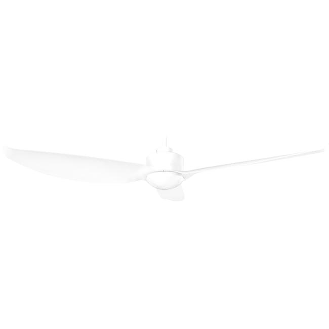 F2FC White Decor Fan (2 Sizes) - 2