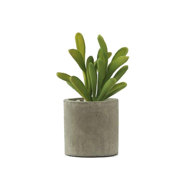 Faux Sedum in Concrete Planter - 0