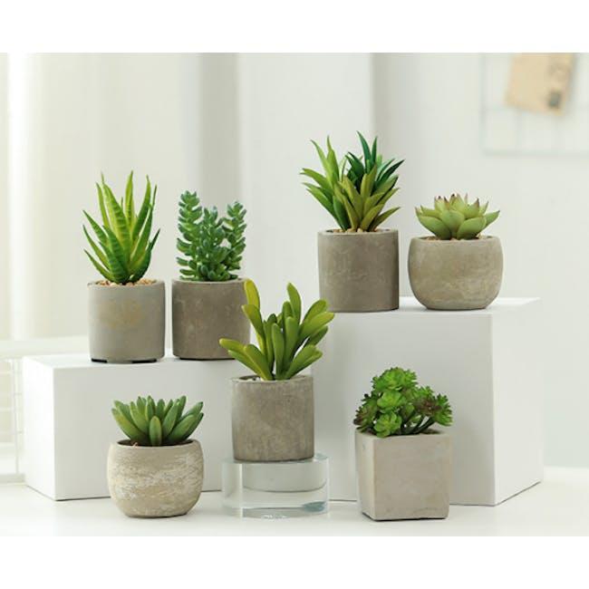 Faux Sedum in Concrete Planter - 2