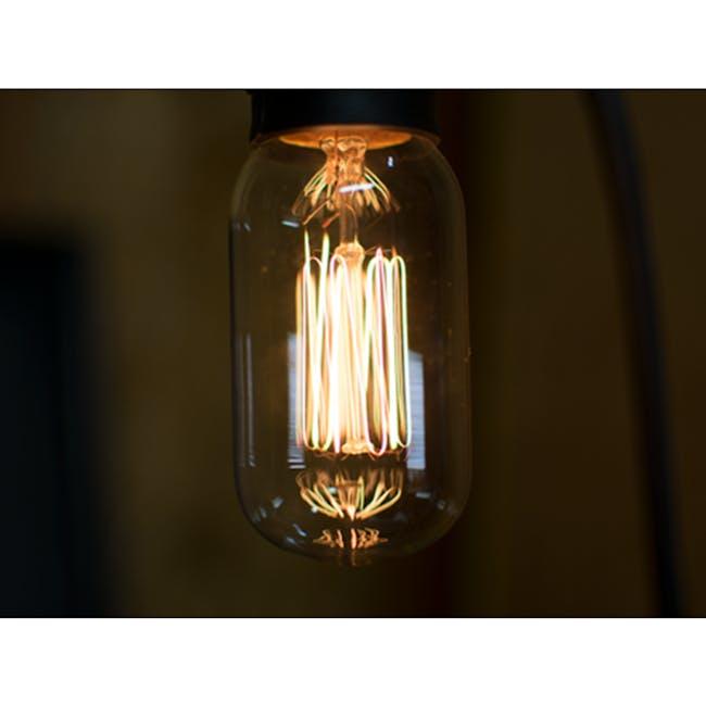 Edison T45 Squirrel Cage Filament Bulb - 1