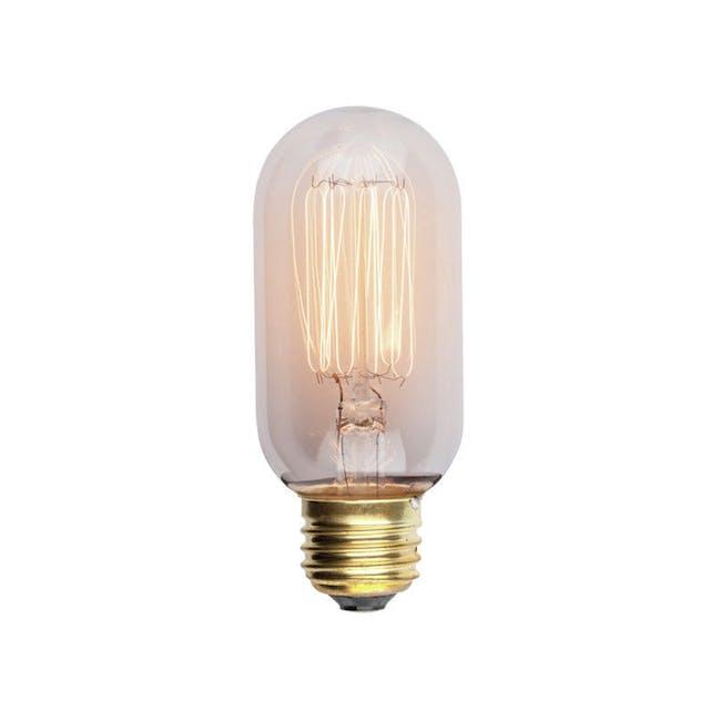 Edison T45 Squirrel Cage Filament Bulb - 0