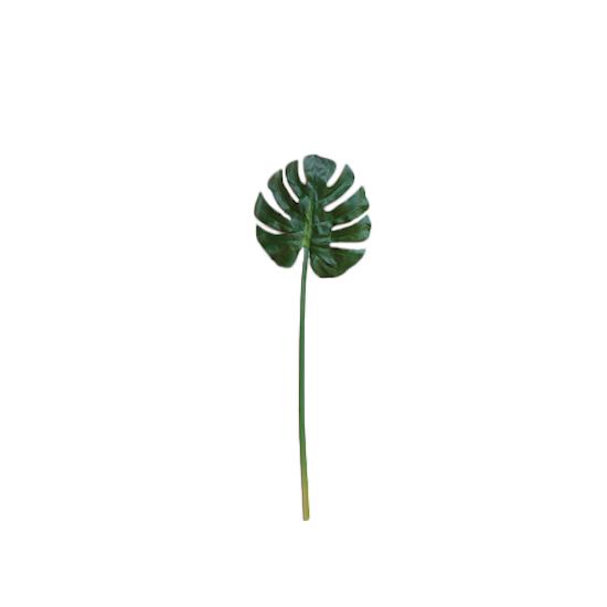 Faux Monstera Leaf Large Botanicals By Hipvan Hipvan