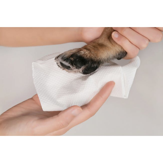 Pidan Paw Cleaning Cup - 6