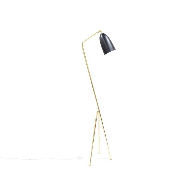 Grasshoppa Floor Lamp - Black, Brass - 0