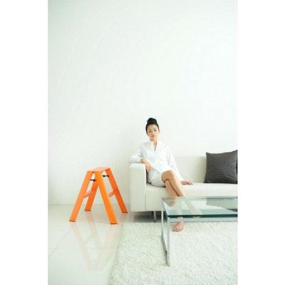 Hasegawa 2 Step Aluminium Ladder – Orange